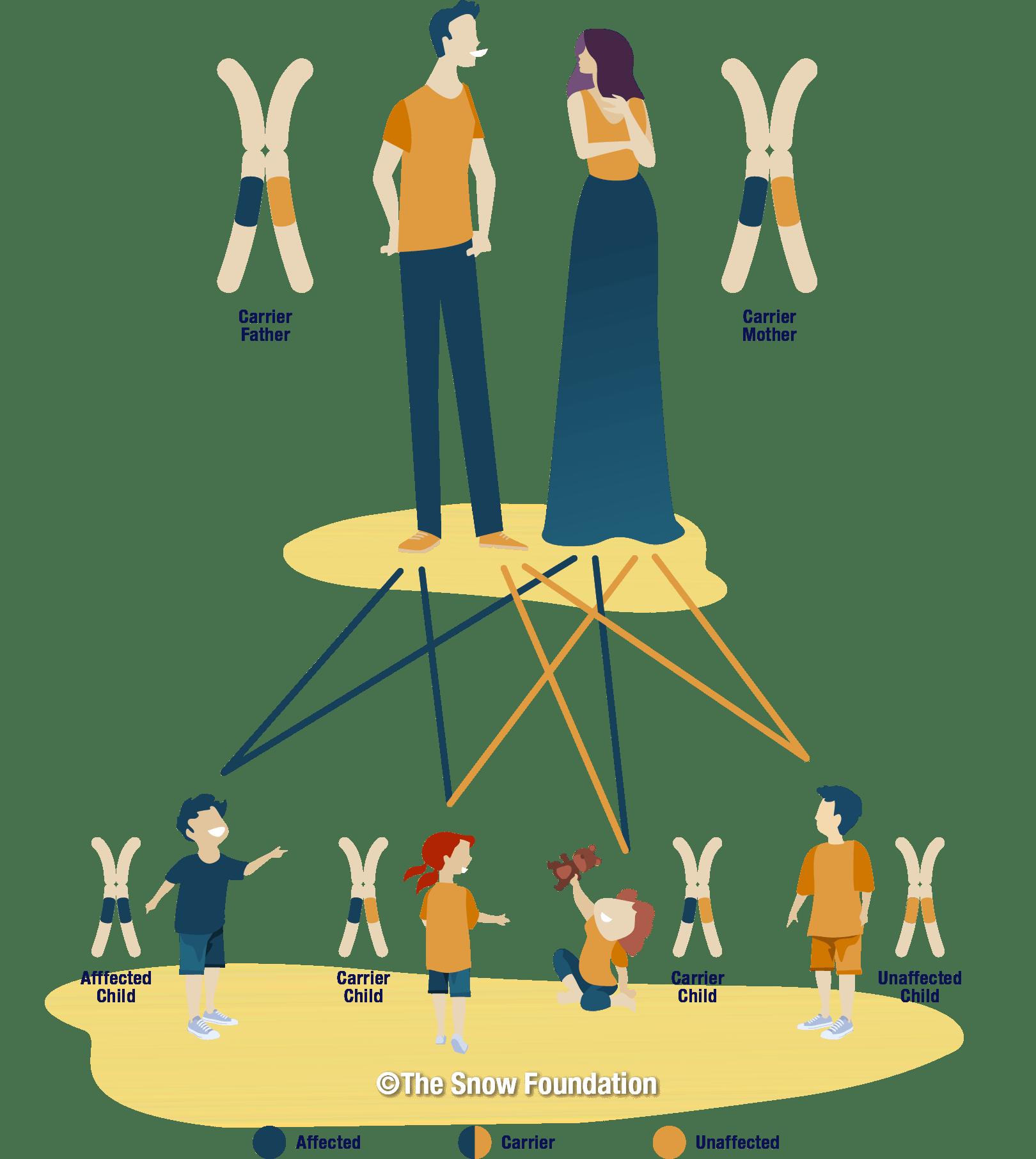 biological inheritance